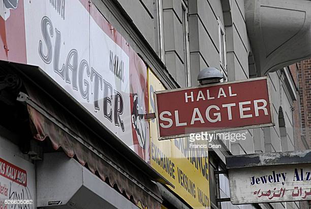 Denmark will banne ritual slaughtering Halal and khoser slaughtering and look after animal rights UK considering too 7 Marchi 2014