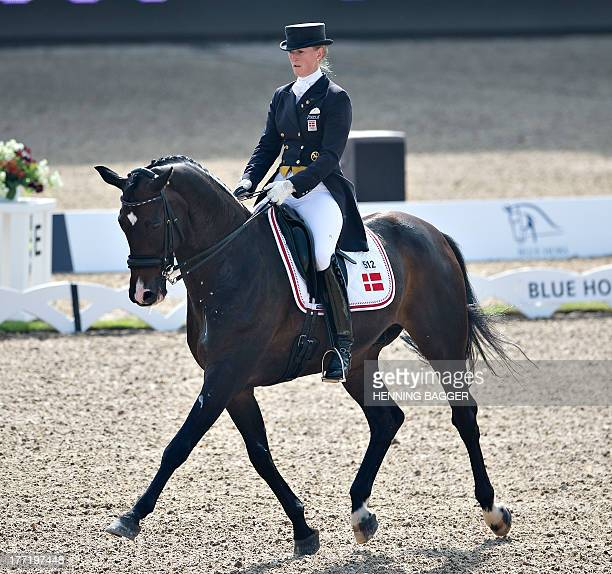 Denmark's Princess Nathalie zu SaynWittgenstein competes on the horse Digby during the FEI Dressage European Championships in Herning Denmark on...