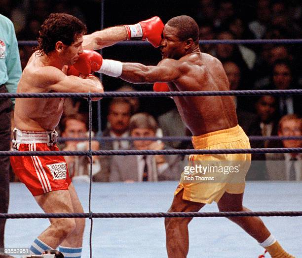 Dennis Andries of Great Britain and Sergio Merani of Argentina during their WBC World Light Heavyweight Championship Title fight at the Royal Albert...