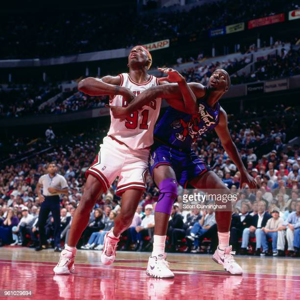 Dennis Rodman of the Chicago Bulls boxes out John Salley of the Toronto Raptors on November 7 1995 at the United Center in Chicago Illinois NOTE TO...