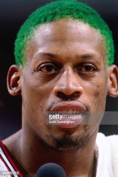 Dennis Rodman of the Chicago Bulls looks on during the game against the New York Knicks on December 6 1995 at the United Center in Chicago Illiniois...