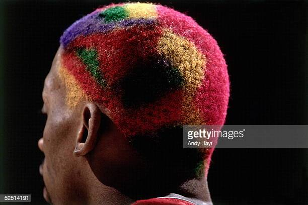 Dennis Rodman of the Chicago Bulls plays with multicolored patterned hair against the Utah Jazz during Game Four of the 1997 NBA Finals at the Delta...