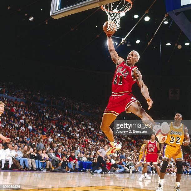Dennis Rodman of the Chicago Bulls rebounds against the Los Angeles Lakers on February 2 1996 at the Great Western Forum in Inglewood California NOTE...
