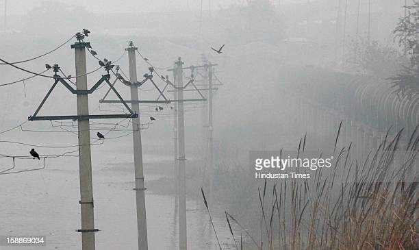 Dense fog at Mayur vihar as temperature dips below 6 degree Celsius on January 2 2013 in New Delhi India There was no respite from cold and dense fog...