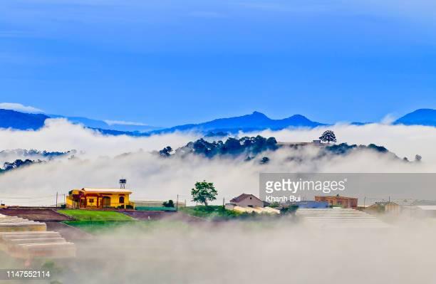 dense fog cover town at dawn