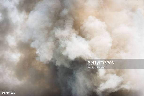 dense white smoke rising from the raging wildfire,close up swirling white smoke background. - inquinamento foto e immagini stock