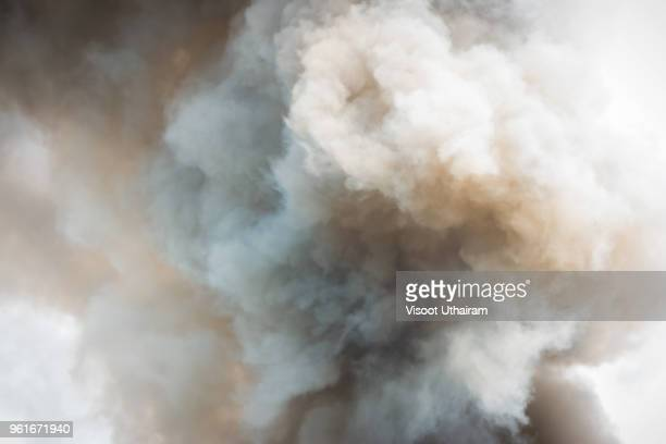 dense white smoke rising from the raging wildfire,close up swirling white smoke background. - bomba - fotografias e filmes do acervo