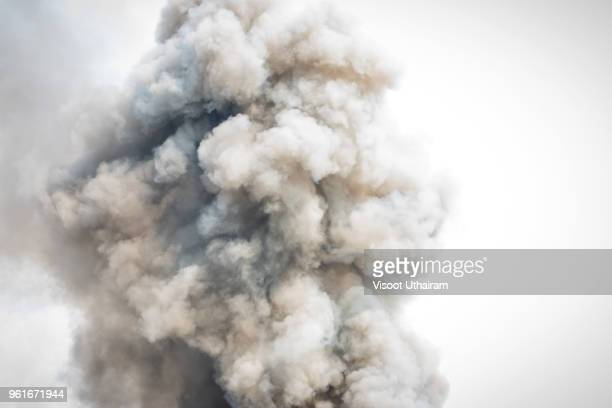 dense white smoke rising from the raging wildfire,close up swirling white smoke background. - surreal - fotografias e filmes do acervo