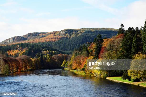 Dense woodland resplendent in autumn colours fringes the River Tay, Scotland's longest river, on October 30, 2020 in Dunkeld, Scotland.