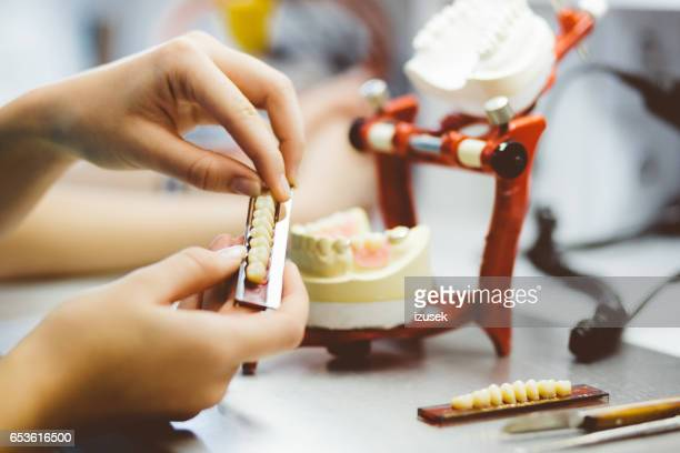 dental student hands working on the denture - implant stock photos and pictures