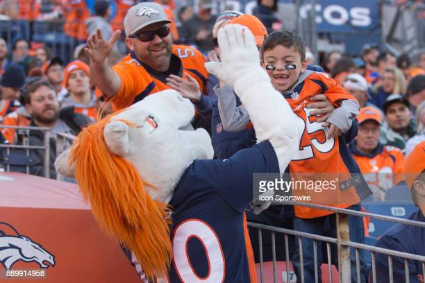 Denver Broncos mascot Miles high fives a fan during the New York Jets vs Denver Broncos football game at Sports Authority Field in Denver CO on...