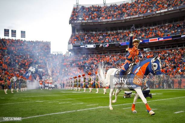 Denver Broncos mascot Thunder is ridden onto the field by Ann Judge before a game between the Denver Broncos and the Houston Texans at Broncos...