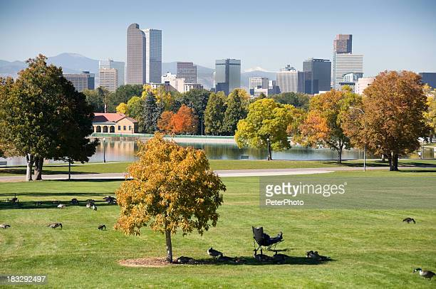 denver during fall season - denver stock photos and pictures