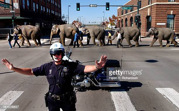 Denver motorcycle policeman Robbie Bryant keeps traffic controlled while the elephants from the Ringling Brothers and Barnum Bailey circus walk...