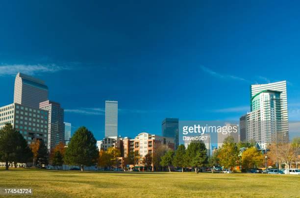 Denver skyline from a park
