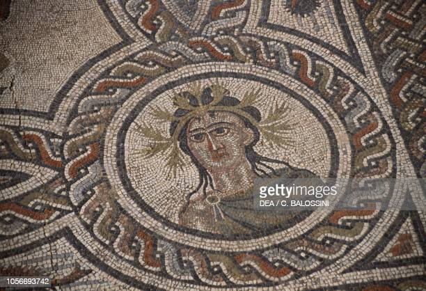 Depiction of Summer, detail from the mosaic in the House of Dionysus and Four Seasons, Roman city of Volubilis , Morocco. Roman civilisation, 3rd...
