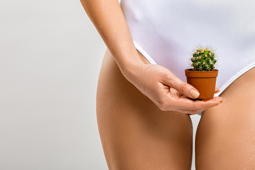 Depilation in the bikini zone. A woman holding a cactus in her hand 934855856