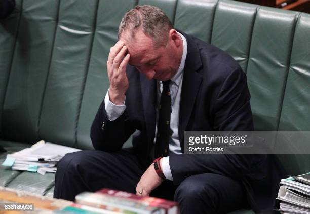 Deputy Prime Minister Barnaby Joyce during House of Representatives question time at Parliament House on August 17, 2017 in Canberra, Australia....