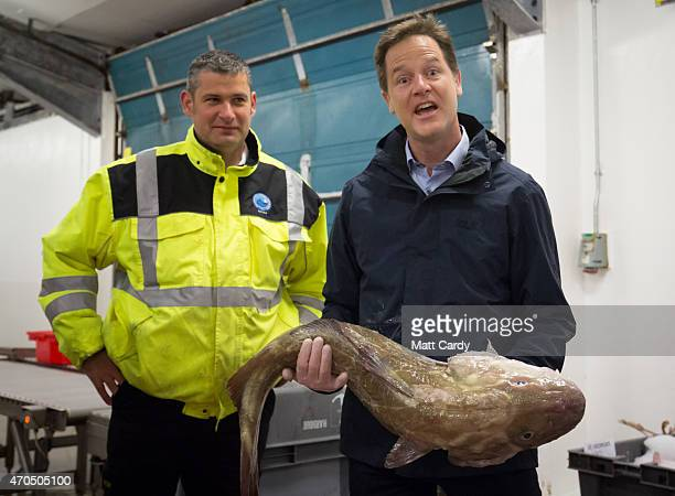 Deputy Prime Minister Nick Clegg holds a fish as he visits Newlyn Harbour accompanied by Harbour Master Rob Parsons at Newlyn Harbour on April 21...
