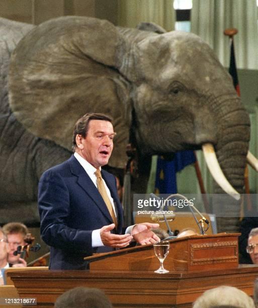 Der amtierende Bundesratspräsident und SPD-Kanzlerkandidat Gerhard Schröder redet am 1.9.1998 beim gemeinsamen Festakt von Bundestag und Bundesrat in...
