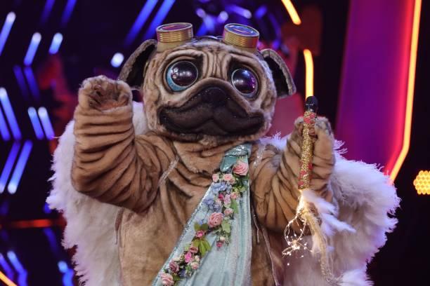 "DEU: ""The Masked Singer"" 1st Show Of Season 5 In Cologne"