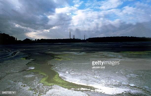 Der `Silbersee' bei Wolfen einAbwassersee des PhotochemischenKombinats 1993