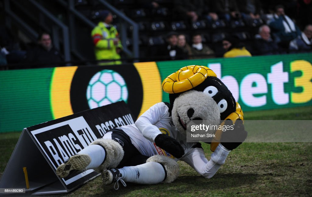 Derby County mascot Rammie slips over during the Sky Bet Championship match between Derby County and Burton Albion at iPro Stadium on December 2, 2017 in Derby, England.