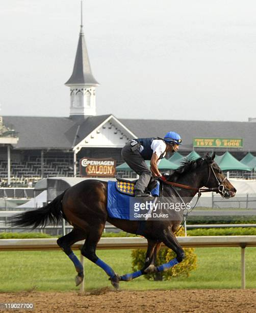 Derby hopeful and trainer Bob Baffert's Bob and John gallops in a morning work out at Churchill Downs at Churchill Downs on May 5, 2006 in...