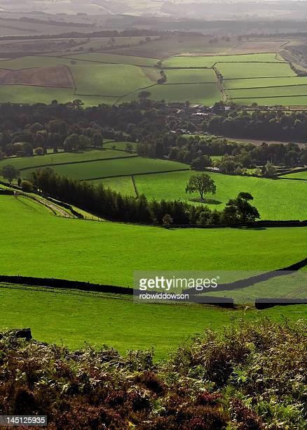 Derbyshire fields