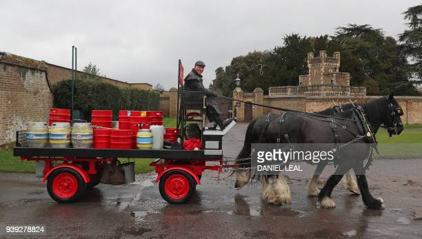 Derek and Paul drive a horse carriage delivering the new Harry Meghan's Windsor Knot ale a limited edition craft beer brewed to mark the royal...