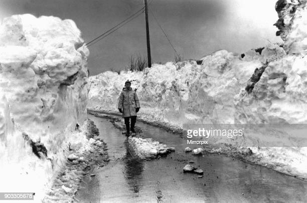 Derek Beck of Koenig Farm Penmark in the Vale of Glamorgan South Wales walking the only road open to the village with snow walls nearly 10 feet high...