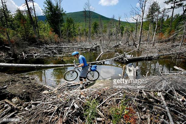 Tux Turkel crosses an unoccupied beaver dam that caused the road to wash out Tuesday July 10 during a mountain bike trip in Maine's 100mile...