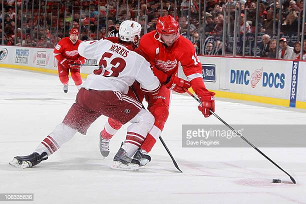 Derek Morris of the Phoenix Coyotes pushes against Pavel Datsyuk of the Detroit Red Wings during a NHL game at Joe Louis Arena on October 28 2010 in...