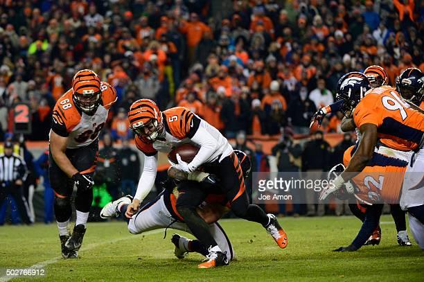 Derek Wolfe of the Denver Broncos takes down AJ McCarron of the Cincinnati Bengals in the fourth quarter The Denver Broncos played the Cincinnati...