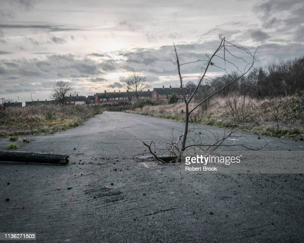 derelict urban land, formally a housing estate, now a wilderness - abandoned stock pictures, royalty-free photos & images