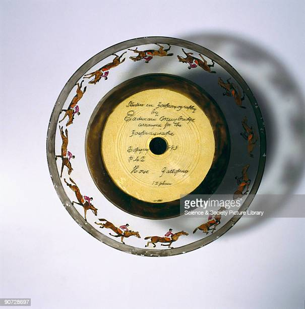 Derived from the chronophotographs made by the photographer Eadweard Muybridge this disc was one of several made for the Zoopraxiscope projector...