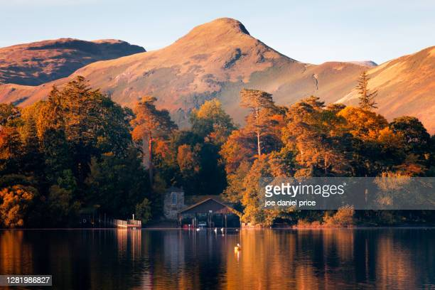 derwent water, catbells, keswick, cumbria, lake district, england - lake stock pictures, royalty-free photos & images