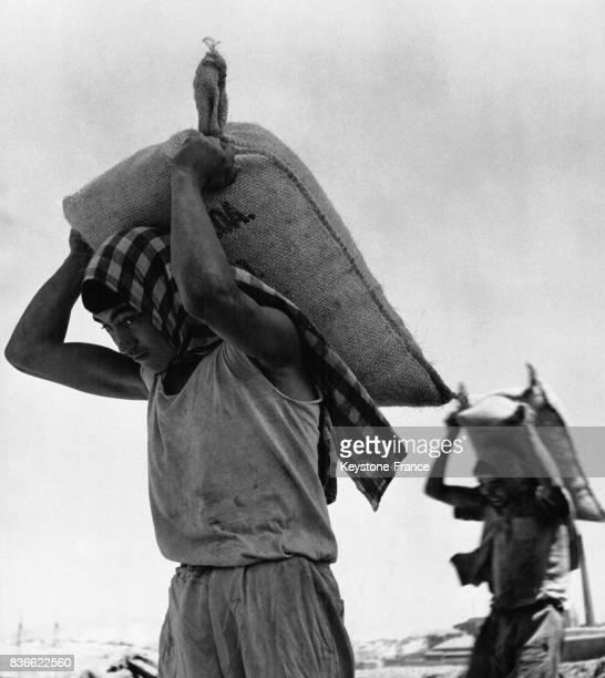 Des dockers déchargent le bateau 'Samuel Parker' de sacs de céréales et de sucre pour le ravitaillement circa 1950 à Athènes en Grèce