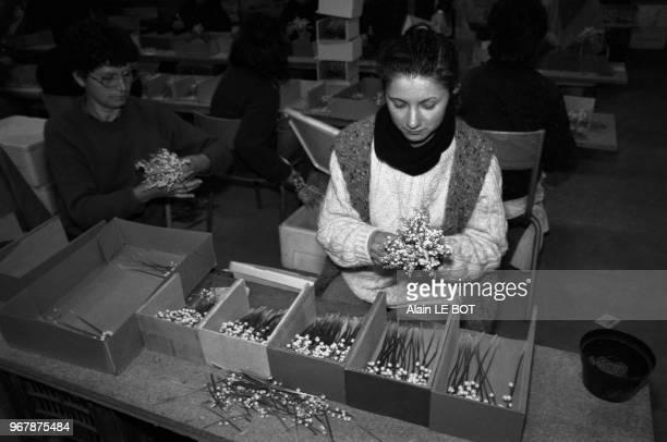 Des employé trient et mettent en caisse le muguet à Nantes le 29 avril 1987 France
