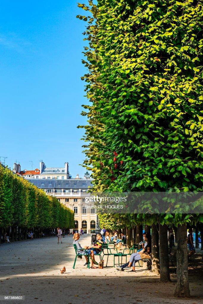 Jardin du Palais Royal : News Photo