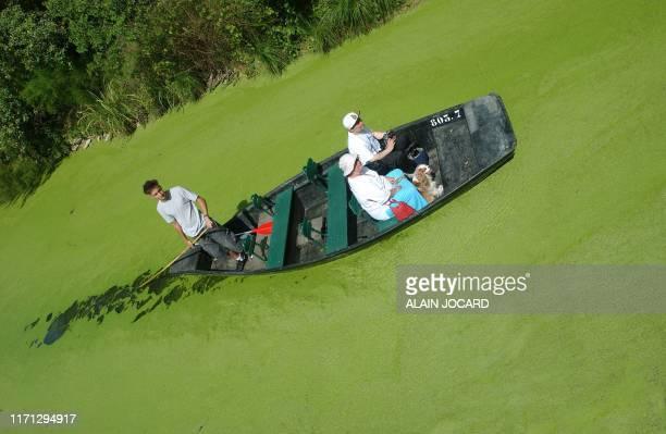 Des personnes se promènent le 04 août 2005 à Coulon sur le Marais poitevin deuxième zone humide de France qui est lui aussi frappé par la sécheresse...