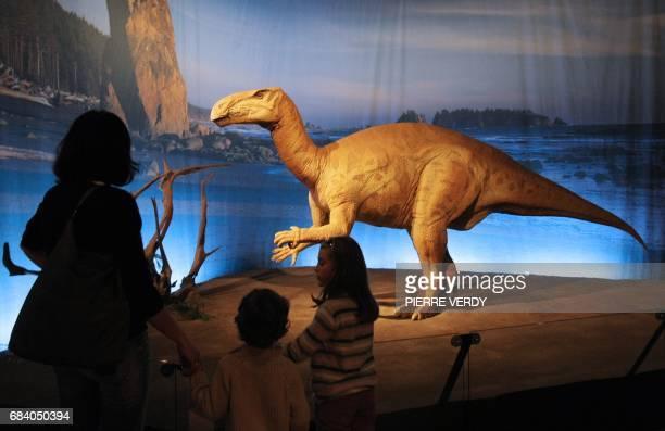LES DINOSAURES A TABLE UNE EXPOSITION AU PALAIS DE LA DECOUVERTE Des visiteurs regardent une reproduction de dinosaure le 09 décembre 2009 au Palais...