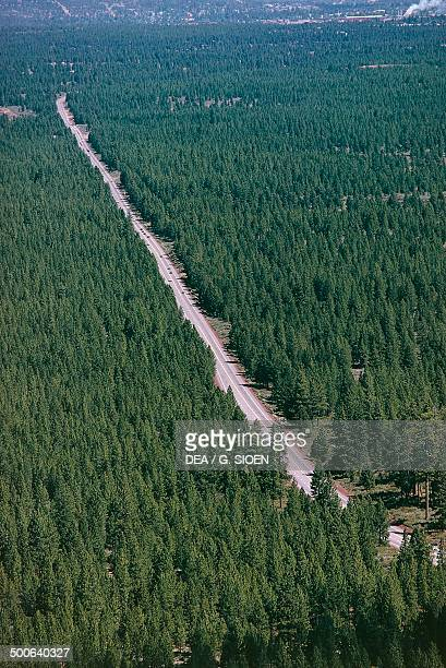 Deschutes National Forest, Oregon, United States of America.