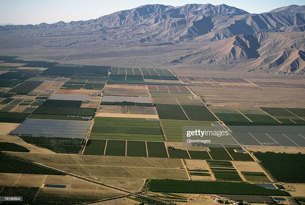 Desert agriculture, Imperial Valley, California : Stock Photo