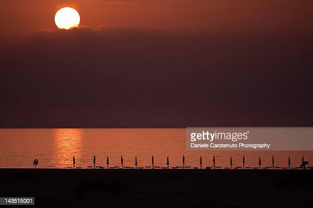 desert at sunset - daniele carotenuto 個照片及圖片檔