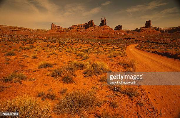 Desert Brush and Dirt Road