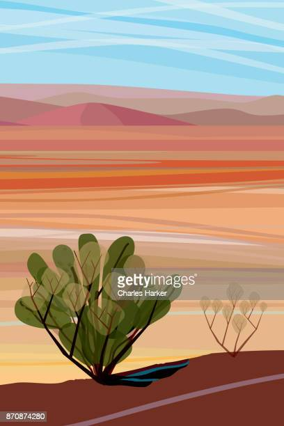 Desert, Cactus brush, Mountains in distance Landscape Illustration