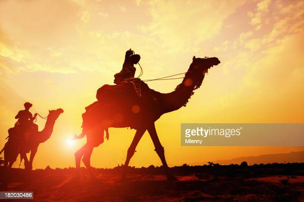 desert camel caravan silhouette at sunset - camel train stock pictures, royalty-free photos & images