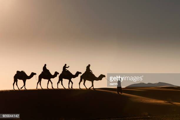 desert, camel ride, enjoying and happy people - camel stock pictures, royalty-free photos & images