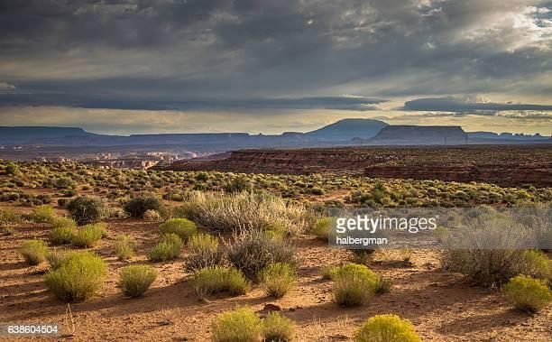 Desert Canyon Near Page, AZ